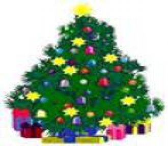 Krásné prožití svátků vánočních a šťastný nový rok 2009..